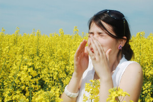 Top Tips For Spring Allergy Relief