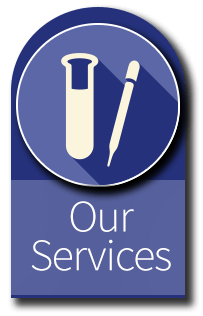 Our Services Link